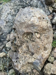 Looked to me like a mummified face or skull